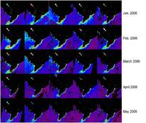 Figure 3: Time series of turbidity in the surface waters of the Mekong River Basin/Delta and Tonle Sap Lake. Images based on MODIS Terra data, January through May 2006.